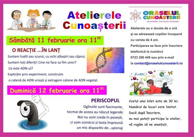 ateliere-februarie-11-12