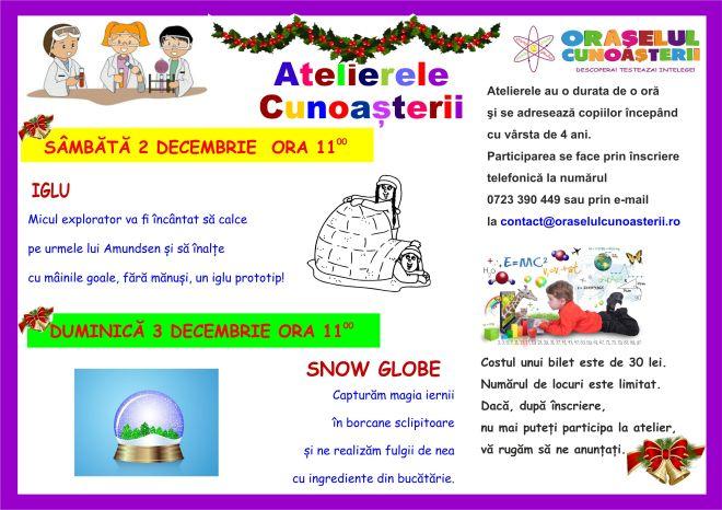 Ateliere decembrie 2-3. 12
