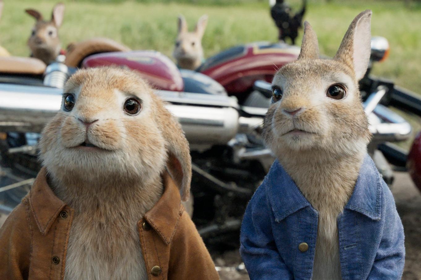peter-rabbit-105419l